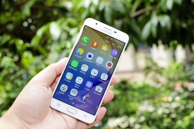 smartphone dans une main paysage vegetal